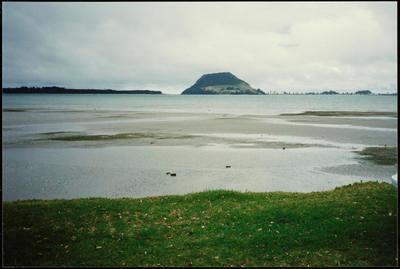 Print, Photographic, Beach Rd, Otumoetai, Tauranga