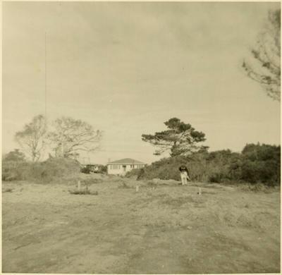Print, Photographic, Section, Beasley Homes, Tauranga