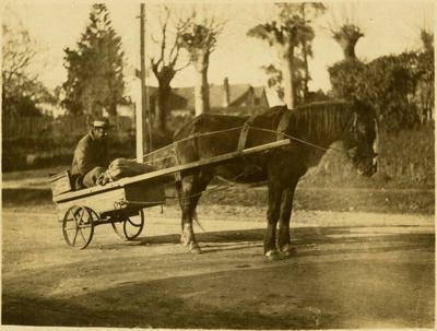 Print, Photographic, Old Winbush, Tauranga
