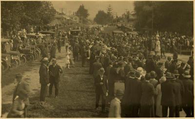 Print, Photographic, Memorial Gates, WW1, Tauranga Domain
