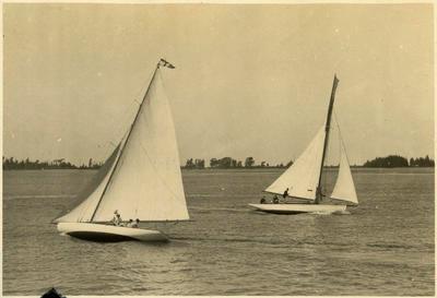 Print, Photographic, Yachts, Tauranga Harbour