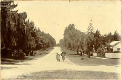 Print, Photographic, First Avenue, Tauranga
