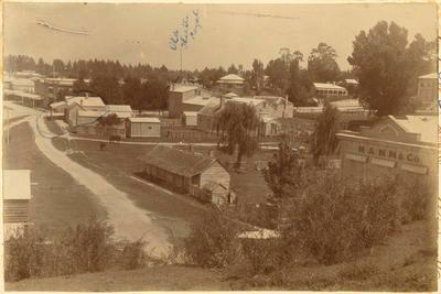Print, Photographic, Tauranga, Maori Hostel