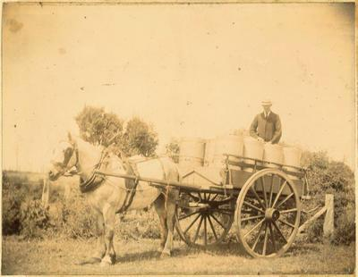 Print, Photographic, Spring Cart Carrying Milk