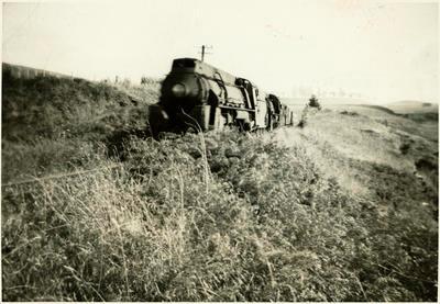 Print, Photographic, Taneatua Express, Otumoetai, Tauranga