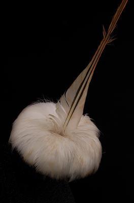 Amokura Feather
