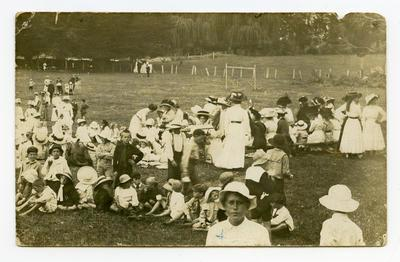 Postcard, Tauranga Domain