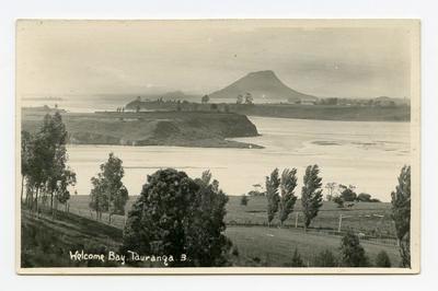 Postcard, Tauranga, Welcome Bay