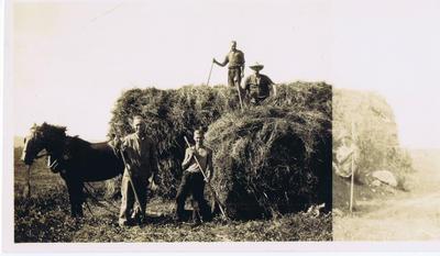 Print, Photographic, Haymaking