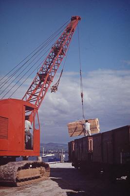 Slide, Tauranga Wharf