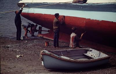 Slide, Boat, Tauranga