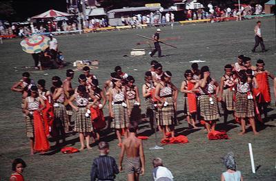 Slide, Highland Games, Tauranga Domain