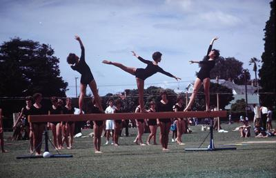 Slide, Gymnastics, Tauranga Domain