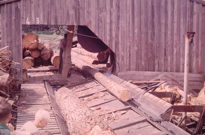 Slide, Sawmill