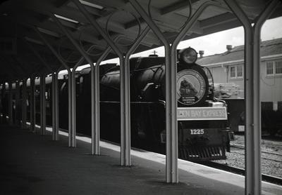 Slide, Golden Bay Express, Tauranga