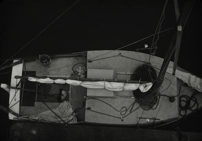 Slide, Yacht, Tauranga