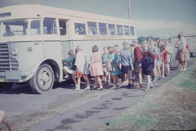 Slide, Tauranga Bus Service