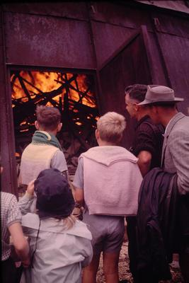 Slide, Bunn Brothers Mill, Matakana Island