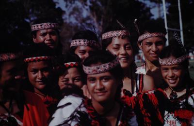 Slide, Kapa Haka Group, Tauranga Domain