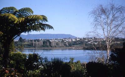 Slide, Otumoetai, Tauranga