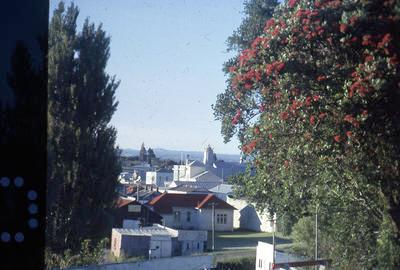 Slide, Town Hall from Monmouth Redoubt, Tauranga