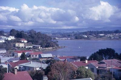 Slide, Waikareo Estuary, Tauranga