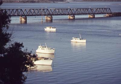 Slide, Matapihi Rail Bridge, Tauranga Habour