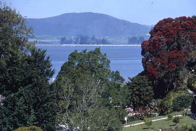 Slide, Tauranga Harbour from Seventh Avenue
