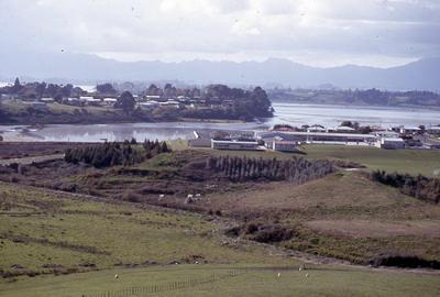 Slide, Otumoetai Intermediate, Tauranga