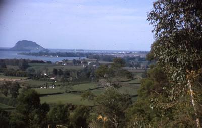 Slide, Minden, Tauranga