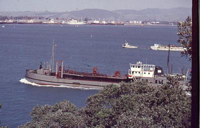 Slide, Ship, Tauranga Harbour