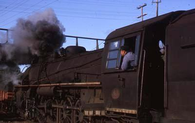Slide, Train, Tauranga