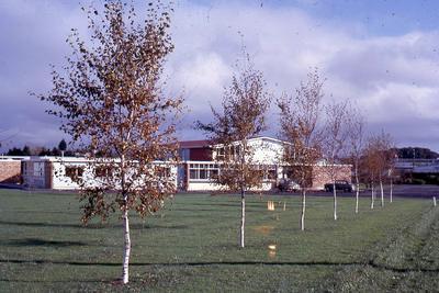 Slide, Tauranga Girls' College