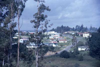 Slide, Merivale from Tauranga Girls' College