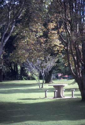Slide, Park, Tauranga