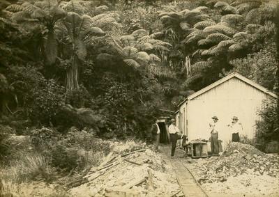 Print, Photographic, Mining, Waitekauri Battery