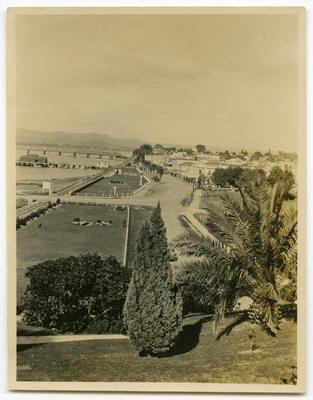 Print, Photographic, Tauranga, The Strand