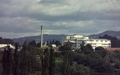 Slide, Tauranga Hospital
