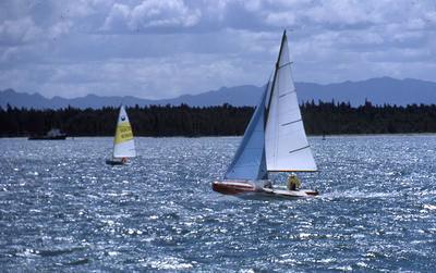 Slide, Yachting, Tauranga Harbour