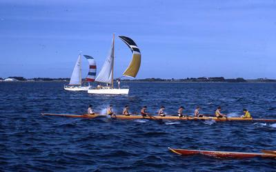 Slide, Yachting and Rowing, Tauranga Harbour