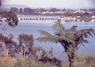 Slide, Hairini Bridge, Tauranga