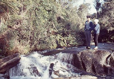 Slide, Whakamarama Falls