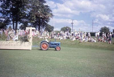 Slide, Nativity Play, Tauranga Domain