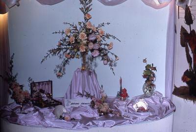Slide, Floral Festival, Tauranga