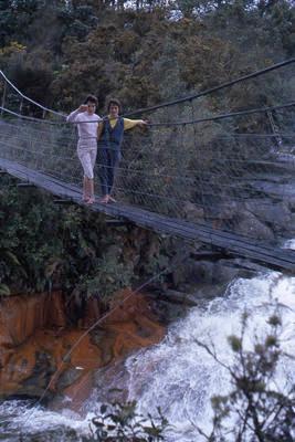 Slide, McLaren Falls, Lower Kaimai