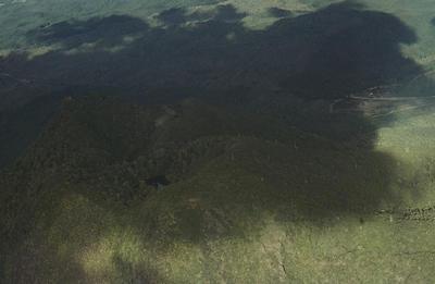 Slide, Mt Edgecumbe