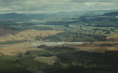 Slide, Forestry, Rotorua