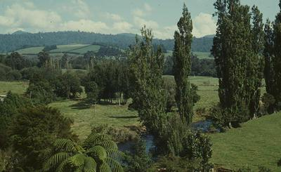 Slide, Waitawheta