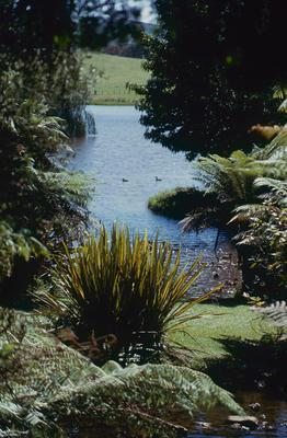 Slide, Gordons Gardens, Waihi