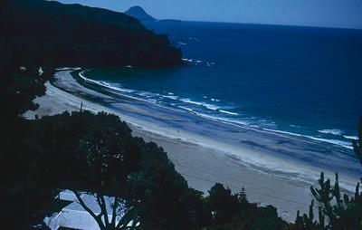Slide, Ohope Beach